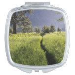 Path in meadow, Yosemite National Park Vanity Mirror