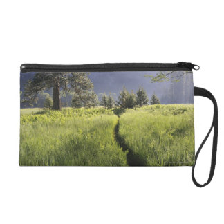 Path in meadow, Yosemite National Park Wristlet Purse