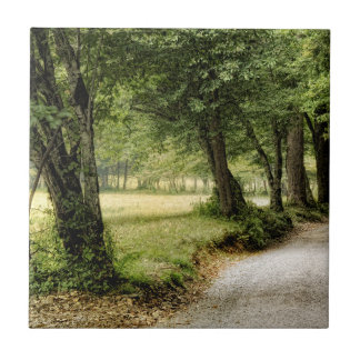 Path in the Country Ceramic Tile
