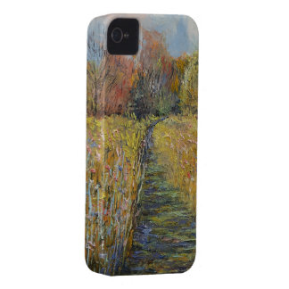 Path in the Meadow iPhone 4 Case