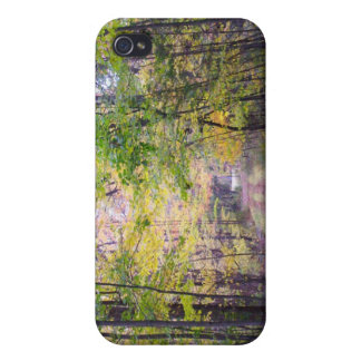 Path in the Woods Autumn Trail iPhone 4 Case