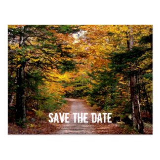 Path in the Woods Fall Save the Date Postcard