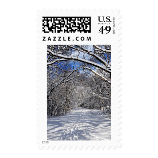 Path in winter forest stamp