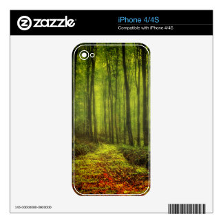 Path In Woods Skins For iPhone 4S