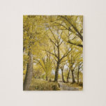 Path in woods, Sugarhouse Park, Salt Lake City Jigsaw Puzzle