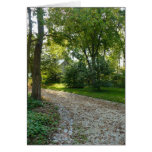 Path less traveled greeting cards