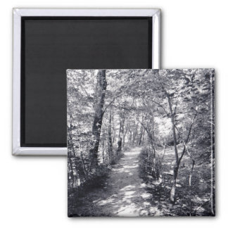 Path of Faith 2 Inch Square Magnet