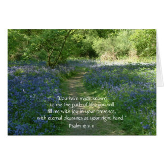 Path of Life | Greeting Cards | Bluebells