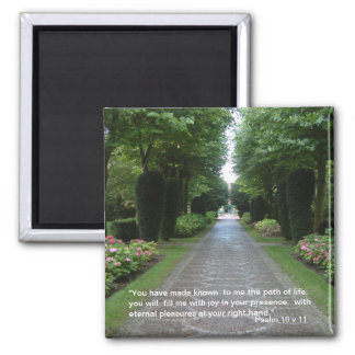 Path of Life | Magnet