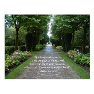 Path of Life | Postcard