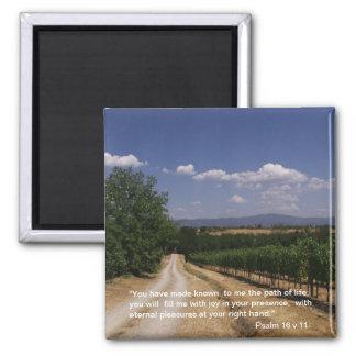 Path of Life - Vineyard | Magnet