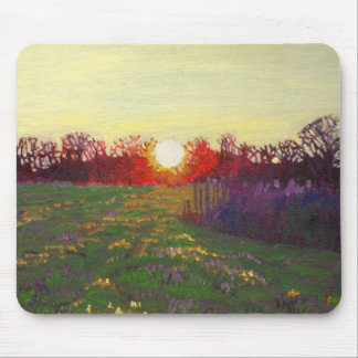 Path of light 2013 mouse pad