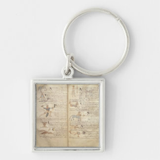 Path of the moon across the constellations Silver-Colored square keychain