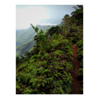 Path on top of the Koolau Mountains Poster