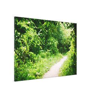 Path pic stretched canvas print