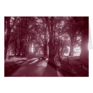 PATH THAT LEADS TO HOME GREETING CARDS