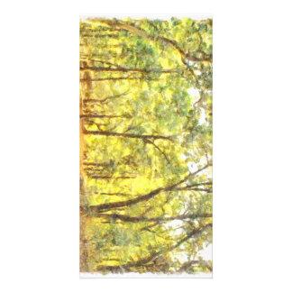 Path through a forest photo card