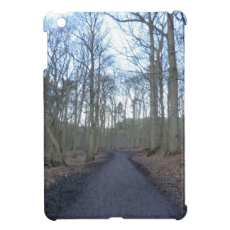 Path Through Delamere Forest in Cheshire Cover For The iPad Mini