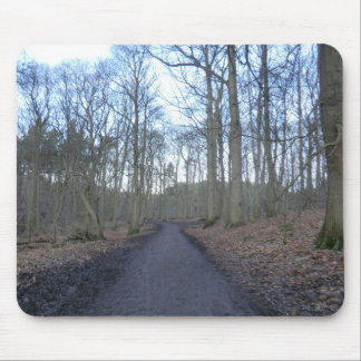 Path Through Delamere Forest in Cheshire Mouse Pad