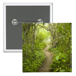Path through the forest pin