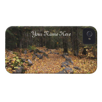 Path Through the Forest; Customizable Case-Mate iPhone 4 Case