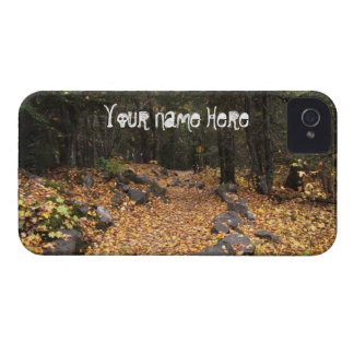 Path Through the Forest; Customizable iPhone 4 Case