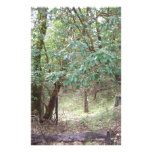 Path Through the Forest Customized Stationery