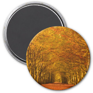 Path through the forest in autumn round magnet