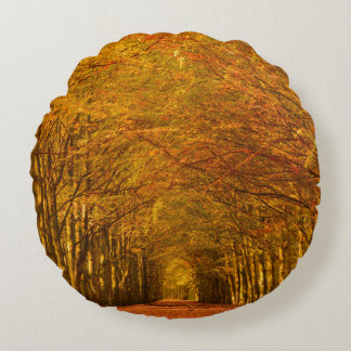 Path through the forest in autumn round pillow