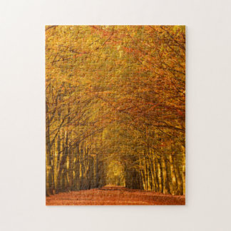 Path through the forest in autumn vertical puzzle