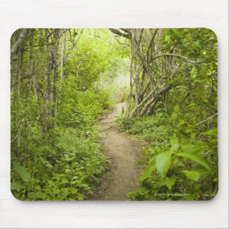 Path through the forest mouse pad