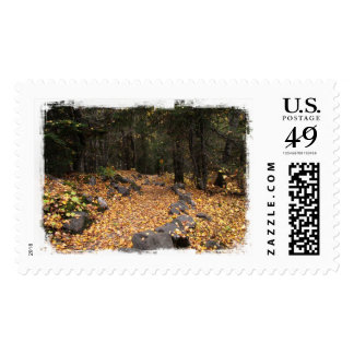 Path Through the Forest; No Text Postage