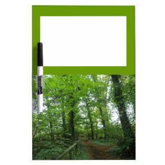 Path through the Green Forest Dry Erase Board