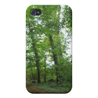 Path through the Green Forest  iPhone 4/4S Case