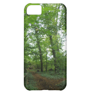 Path through the Green Forest iPhone 5 Case