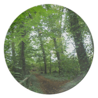 Path through the Green Forest Plate