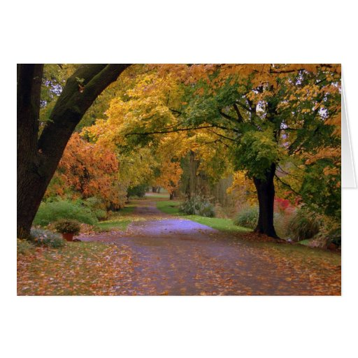 Path to Fall Stationery Note Card