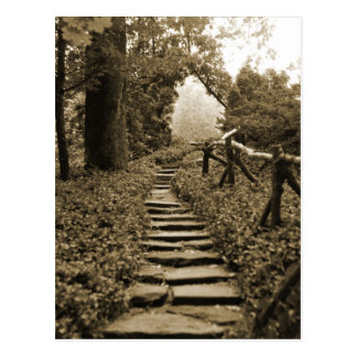 Path To Light Postcard