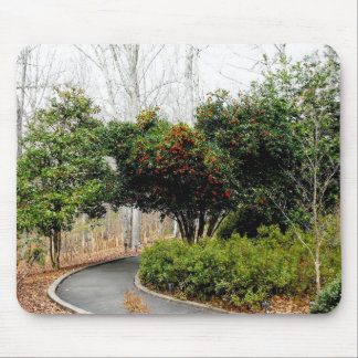 Path to Serenity Mouse Pad