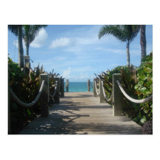 Path to the Beach Post Cards