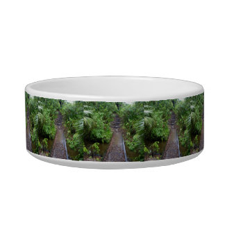 Path to the Enchanted Forest Bowl