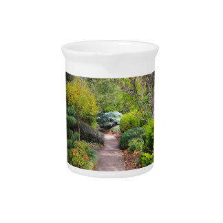 Path to tranquility beverage pitcher
