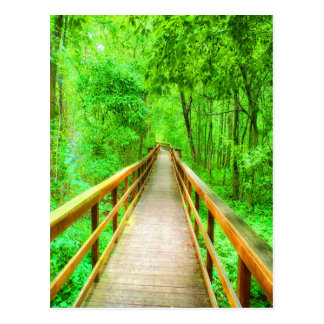 Path to your beauty west seneca new york park pede postcard