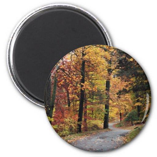 Paths 2 Inch Round Magnet