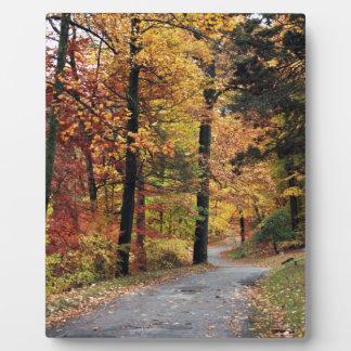 Paths Plaque