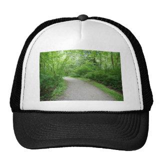 PathTurn052309 Mesh Hats