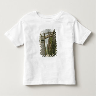 Pathway and small bridge, Yellow Mountain, Toddler T-shirt