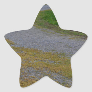 pathway at lillydale lake star sticker