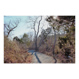 Pathway at the Refuge Poster