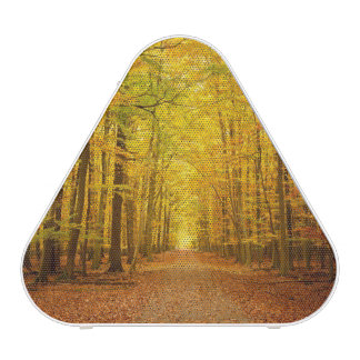 Pathway in the autumn forest bluetooth speaker